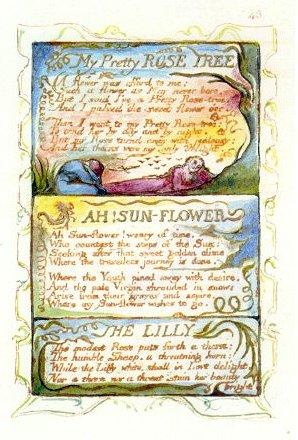 Blake_Roses_Sun-Flower_Lilly